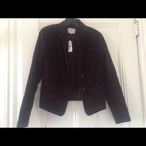 Loft burgundy velvet Jacket